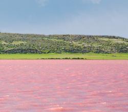 фото малиновое озеро